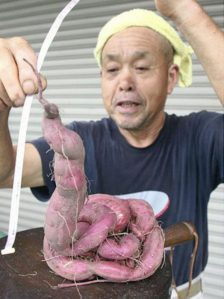 fukushima-japan-nuclear-food-3