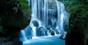 Waterfall-In-Forrest-485x728-610x316