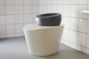 Wellbeing-Toilet_604_0